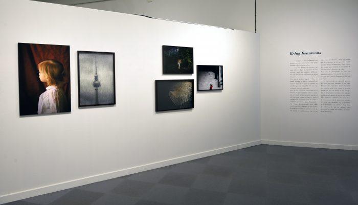 Musée de la Roche-sur-Yon — Pôle Arts Visuels Pays de la Loire