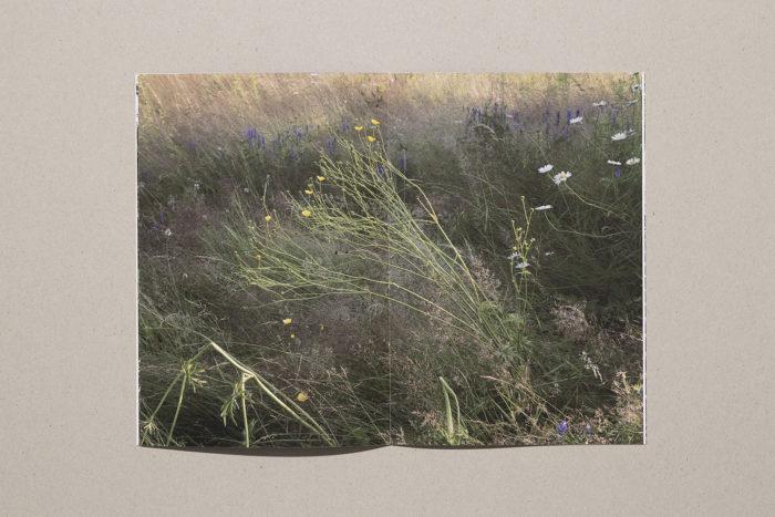 Sara A. Tremblay - Pôle arts visuels Pays de la Loire