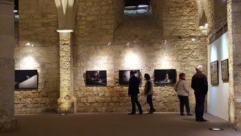 Festival de l'image — Pôle Arts Visuels Pays de la Loire
