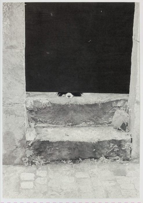 Camille Girard et Paul Brunet - Pôle arts visuels Pays de la Loire