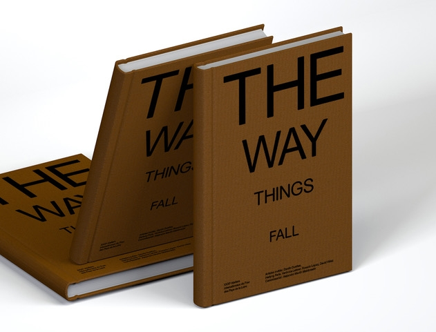The Way Things Fall — Pôle Arts Visuels Pays de la Loire