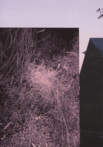 Sara A. Tremblay — Pôle Arts Visuels Pays de la Loire