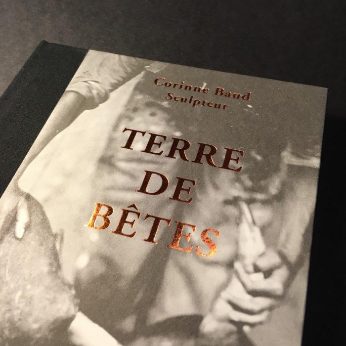 Corinne Baud — Pôle Arts Visuels Pays de la Loire