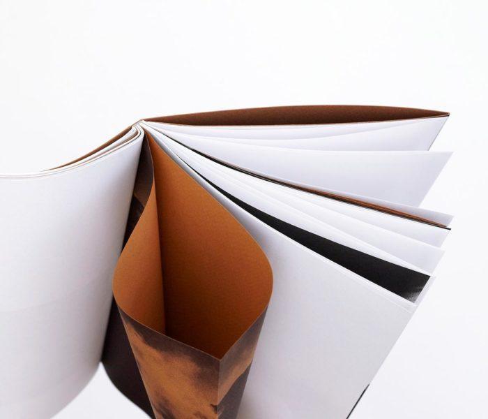 Guillaume Noury, Amélie Samson - Pôle arts visuels Pays de la Loire